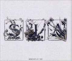 Sia-Breathe-Me-482916